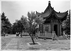 Recent visit to Xi'an China