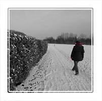 Walking in snow, a woman walks through a park during winter